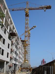 crane-1549933